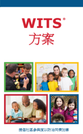 WITS Overview Mandarin